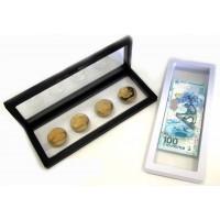 Дисплей для монет с подставкой (230х90 мм.), черный