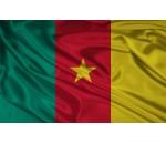 > Камерун