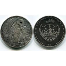 1 доллар 2013 Палау. Белка кристалл Антик финиш (КОПИЯ)