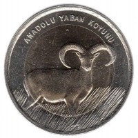 1 лира 2015 год. Турция. Серый баран
